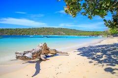 Caraïbisch strand met vissersboten bij Playa-La Ensenada, Dominic stock afbeelding