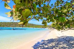 Caraïbisch strand met vissersboten bij Playa-La Ensenada, Dominic stock foto