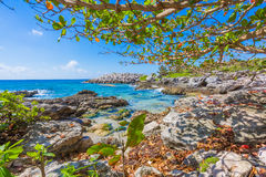 Caraïbisch strand in Mexico Stock Foto's