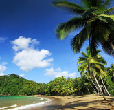 Caraïbisch Strand - Tobago 07 Royalty-vrije Stock Afbeelding