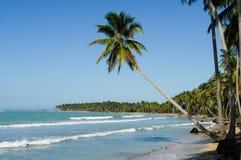 Caraïbisch strand van playabonita in Las Terrenas stock foto's