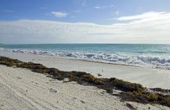 Caraïbisch vuil strand royalty-vrije stock fotografie