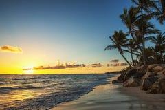 Caraïbisch wild strand, Punta Cana royalty-vrije stock foto