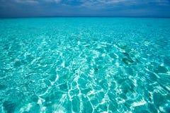 Caraïbische overzeese mening in paradijs stock afbeelding