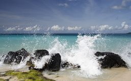 Caraïbische Plons Royalty-vrije Stock Afbeeldingen