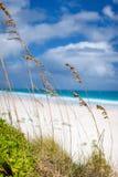 Caraïbische strand en overzees Stock Afbeeldingen