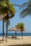 Caraïbische stranden Royalty-vrije Stock Foto