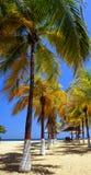 Caraïbische stranden stock fotografie