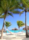 Caraïbische strandhangmat en palmen Stock Afbeelding
