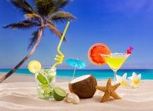 Caraïbische tropische mojito Margarita van strandcocktails Stock Afbeeldingen