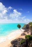 Caraïbische turkooise aqua van strandTulum Mexico Stock Fotografie
