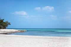 Caraïbische turkooise overzeese strandkust met wit zand, overweldigende mening onder blauwe hemel Varadero strand, Cuba stock foto's