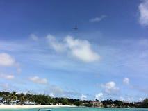 Caraïbische vlucht Stock Foto's