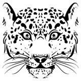 Cara blanco y negro del leopardo del bosquejo del vector stock de ilustración