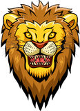 Cara da mascote do leão Foto de Stock