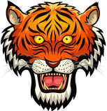 Cara da mascote do tigre Imagem de Stock