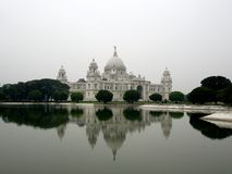 Cara de Bengal Foto de Stock Royalty Free