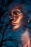 Cara de bronce Imagen de archivo libre de regalías