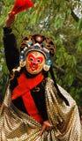 Cara de la ópera Imagen de archivo libre de regalías