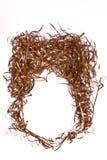 Cara de la cinta magnética Foto de archivo