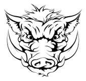 Cara de la mascota del verraco Imagen de archivo