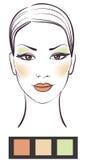 Cara de la muchacha de la belleza con maquillaje