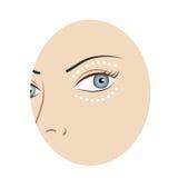 Cara de la mujer Imagen de archivo libre de regalías
