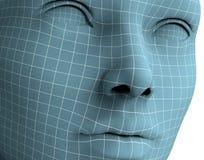 Cara de la mujer en las líneas del wireframe aisladas en blanco ilustración 3D Imágenes de archivo libres de regalías