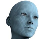 Cara de la mujer en las líneas del wireframe aisladas en blanco ilustración 3D Fotos de archivo