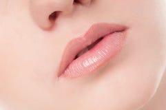 Cara de la mujer joven de la belleza. Zona de los labios Foto de archivo