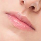 Cara de la mujer joven de la belleza. Zona de los labios Fotos de archivo libres de regalías