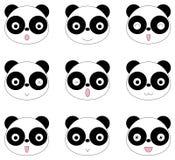 Cara de la panda muchas emociones Fotos de archivo libres de regalías
