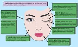 Cara de la plantilla para el maquillaje Ilustración del vector Fotografía de archivo libre de regalías