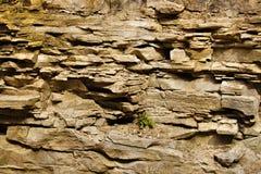 Cara de la roca Fotografía de archivo