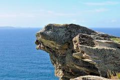 Cara de la roca Foto de archivo