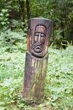Cara de madera Imágenes de archivo libres de regalías