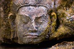 Cara de pedra musgoso Foto de Stock