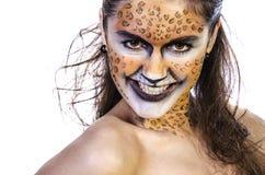 Tigress Fotos de Stock