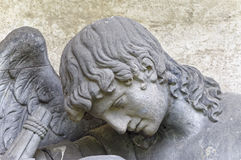 Cara de un hombre con las alas Fotografía de archivo libre de regalías