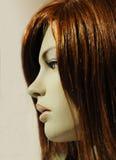 Cara de un maniquí Foto de archivo libre de regalías