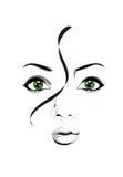Cara de una muchacha Imagenes de archivo