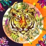 Cara del ejemplo del tigre libre illustration