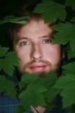 Cara del hombre rodeada por las hojas. Imagenes de archivo
