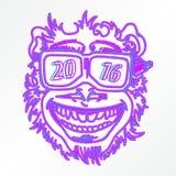 Cara 2016 del mono Foto de archivo libre de regalías