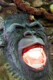 Cara del mono en el parque fotografía de archivo libre de regalías