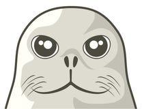 Cara del perro del sello Imagen de archivo libre de regalías