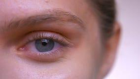Cara del primer y ojo azul enfocado de la hembra caucásica con la piel perfecta y la cara lisa almacen de video
