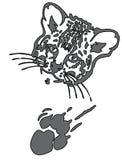 Cara del puma o del jaguar del leopardo con la impresión de la pata Fotografía de archivo libre de regalías