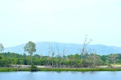 Cara 3 del río Fotografía de archivo libre de regalías