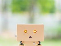 Cara delantera de la muñeca de la caja Fotografía de archivo
